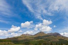 Liten Molasdel av den Colorado slingan Arkivfoto