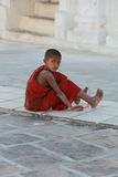 liten monk Arkivfoton
