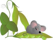 Liten mus som sover på ärtafröskidan vektor illustrationer