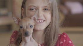 Liten nätt lycklig flicka för stående som rymmer en gullig chihuahuavalp och spelar med honom i vardagsrum close upp stock video
