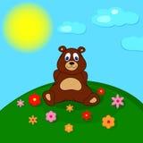 Liten nallebjörn på ängen Arkivbild