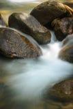 Liten ny vattenfall i mest rainsforest Arkivfoto