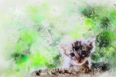 Liten nyfödd kattungevattenfärg för blåa ögon som målar digital konststil, illustrationmålning arkivbild