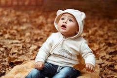 Liten nyfiken pojke i höstskogen royaltyfri foto