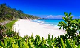 Liten och nätt ansestrand på ön av ladigue i Seychellernaen Arkivbilder