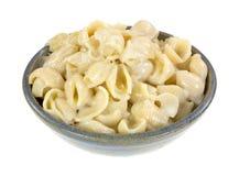 Liten ost täckte pastaskal i bunke Arkivfoto