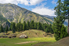 Liten by på den felika ängen i sommar, Gilgit, Pakistan Fotografering för Bildbyråer
