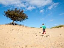 Liten pojke som går i dynlandskap Arkivfoto
