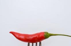 Liten röd chili på en gaffel Fotografering för Bildbyråer