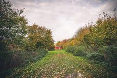 Liten röd kabin i en trädgård Royaltyfri Bild