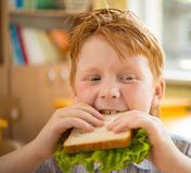 Liten rödhårig manskolpojke som äter smörgåsen Arkivfoton