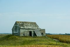 Liten riden ut byggnad bredvid ett havrefält i North Dakota fotografering för bildbyråer