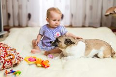Liten rolig Caucasian flicka som barnet sitter hemma på golvet på en ljus matta med bästa vän av den halvblods- hunden med arkivbild