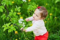 Liten söt flicka på trädgården Arkivbilder