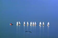 liten seglingskola Royaltyfri Bild