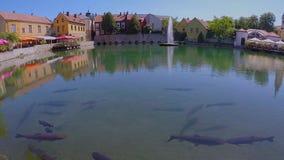 Liten sjö från en liten stad Tapolca i Ungern lager videofilmer
