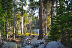 Liten sjö i de höga toppiga bergskedjorna Royaltyfri Bild