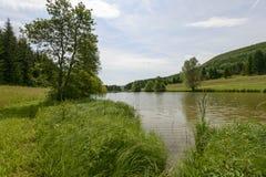 Liten sjö i den sydliga svarta skogen, Ofingen, Baden Arkivfoto