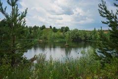 Liten sjö i fältet arkivfoto