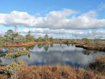Liten sjö i hed royaltyfri fotografi