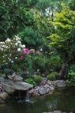 Liten sjö i trädgården Arkivbilder