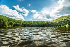 Liten sjö som omges med pinjeskogen Royaltyfri Fotografi