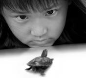 Liten sköldpadda och liten flicka Royaltyfria Bilder