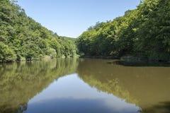 Liten skogsjö i Ungern Arkivbilder