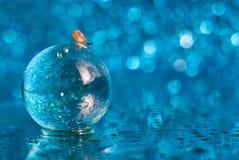 Liten snigel på en exponeringsglasboll på en blå bakgrund med bokeh royaltyfria bilder