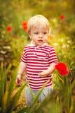 Liten sommarpojke fotografering för bildbyråer