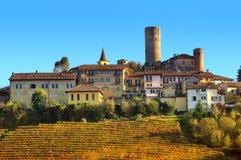 Liten stad och vingårdar på kullen i Italien Royaltyfri Foto