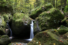 Liten ström i mitt av den svarta skogen royaltyfria foton