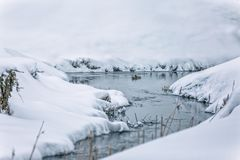 Liten ström i snö arkivfoton