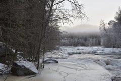 Liten ström med is och dimma Arkivbild