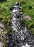 Liten ström med snabbt flödande vatten Arkivfoton