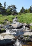 Liten ström med snabbt flödande vatten Royaltyfri Bild