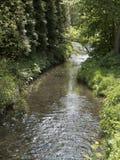 Liten ström som flödar till och med den pittoreska dalen med ängar och skogar Royaltyfria Bilder