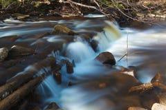 Liten strömvattenfall i skogen Arkivfoton