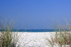 liten strand royaltyfri foto