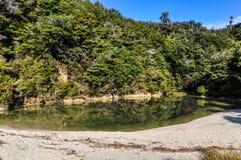 Liten strand i Abel Tasman National Park, Nya Zeeland Arkivbilder