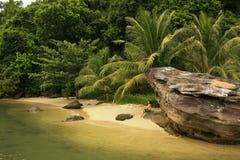 Liten strand på Reamnationalparken, Cambodja Arkivfoton
