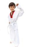 Liten Taekwondo pojkekampsport Arkivbilder