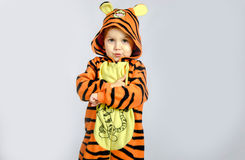 liten tiger Arkivfoto
