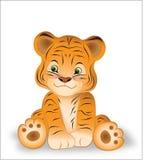 liten tigress arkivfoton