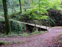 Liten träbro i träna av Berdorf, Luxembourg Royaltyfria Bilder