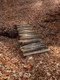 Liten träbro på en bakgrund av stupade sidor Royaltyfria Foton
