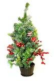 liten tree för jul Arkivbilder