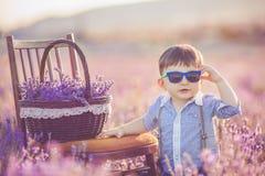 Liten trendig pojke som har gyckel i lavendelsommarfält. Fotografering för Bildbyråer
