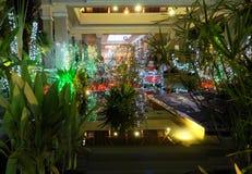 Liten tropisk trädgård som dekoreras med julpynt dekorativ lighting tr?dg?rds- tr?dg?rdar hamilton New Zealand f?r design natt fotografering för bildbyråer