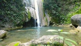 liten tropisk vattenfall stock video